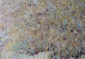 Detail Lasiurus scindicus