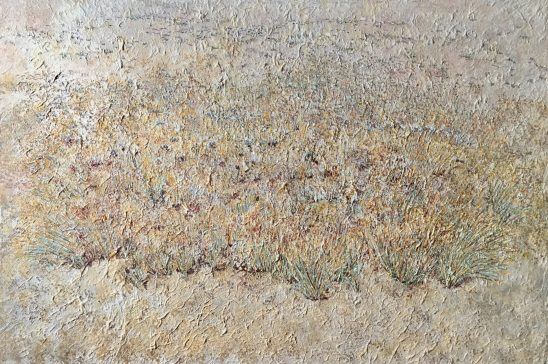 Sewan (Lasiurus scindicus)